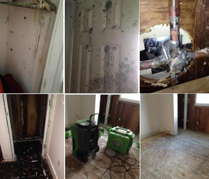 Mold Remediation Does Your Camden Home Have A Mold Problem?  SERVPRO of MT Ephraim/Bellmawr can help!