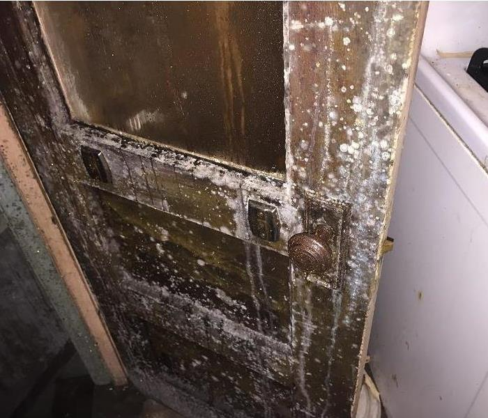 Mold Remediation Does Your Gloucester NJ Home Have A Mold Problem?