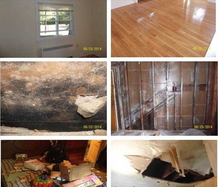 Mold Remediation Hoarding – Water Damage – Mold Cleanup, Camden NJ